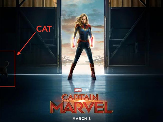 that-cat-is-probably-carol-danvers-cat-from-the-comics-chewie-whos-actually-an-alien-called-a-fl